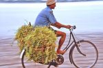 Balinese farmer on bicycle